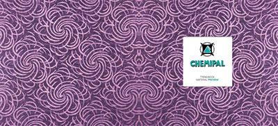 pdf-interattivo-schede_chemipal-viola-1
